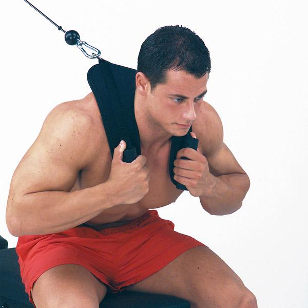 Body Solid Tools Ab Crunch Harness