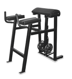 Reverse Hyperextension Bench